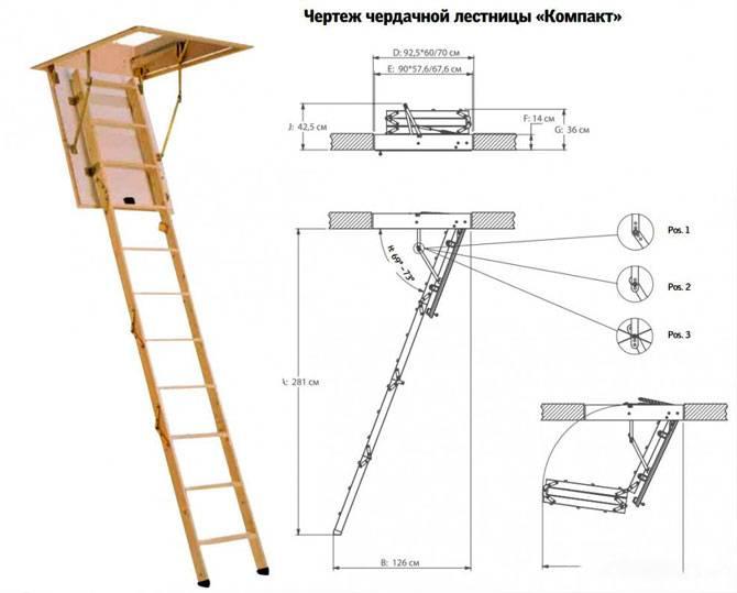 Книжная полка своими руками 180 фото: чертежи и 57
